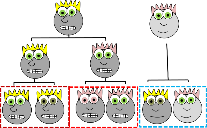 cartoon faces grouped by lineage